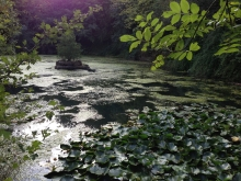 The Source - a beautiful pond at Taize