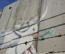 Dove behind barred wire, Israeli security wall
